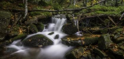 Lanscape Waterfall in primary forest BayerischerWald National Park Kleine Ohe Bayern Deutschland Autumn October