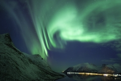 Electric Lights | Arctic Norway