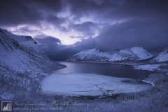 Iced Fjord | Arctic Norway